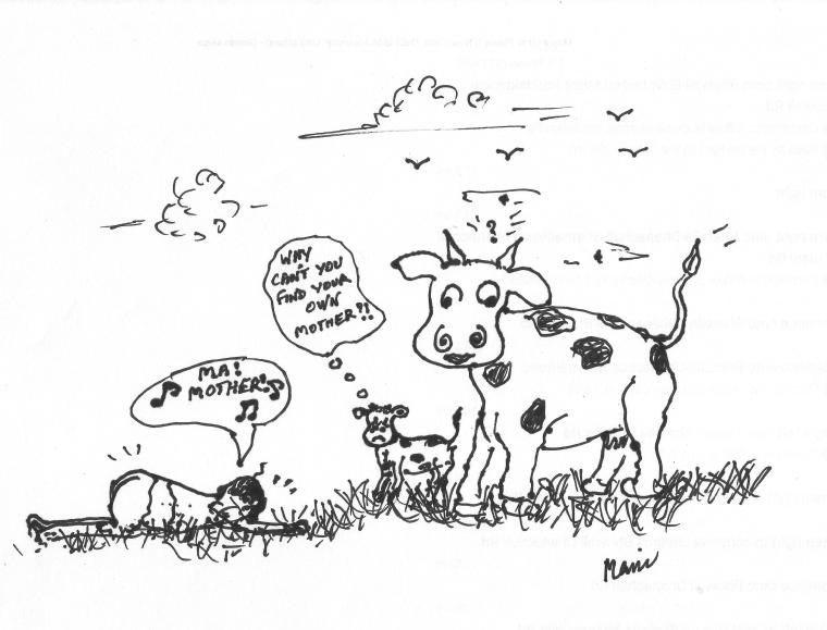 Cow's laughter 001